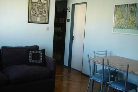 Gran estudio muy luminoso - Buenos Aires - Apartamento