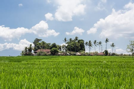 Great Value, 3 Bedroom Bali Villa  - Tabanan - Villa
