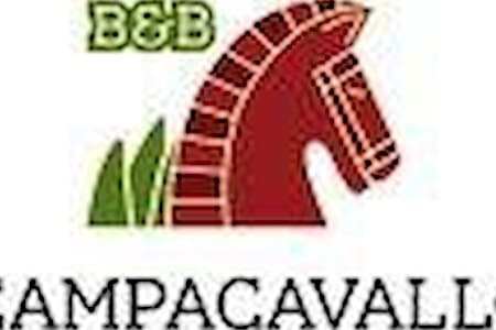 Arancio - Campacavallo b&b low cost - Bed & Breakfast