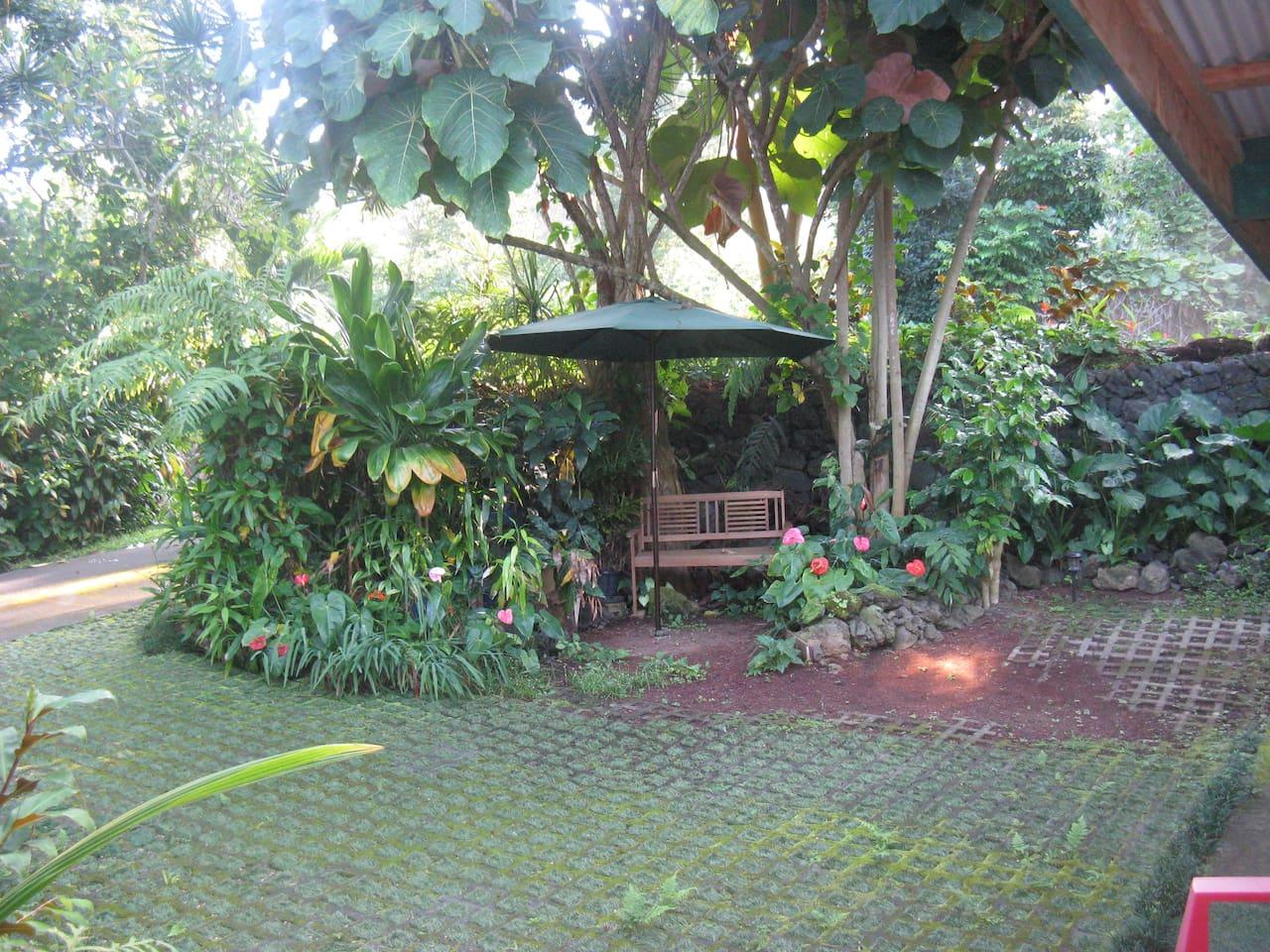 Charming Holualoa Hostel !