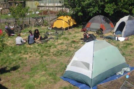 Dog friendly camping @ Pt. Reyes