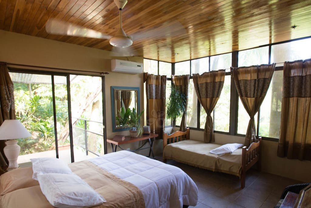 Tree Top Canopy Suite