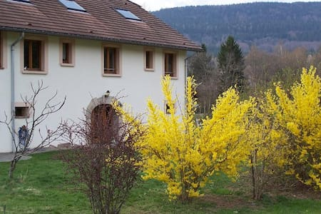 Big house in the montain of Les Vosges - Ramonchamp - Dům