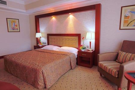 Стандарт с двуспальной кроватью - вид на Байтерек - Astana - Pis