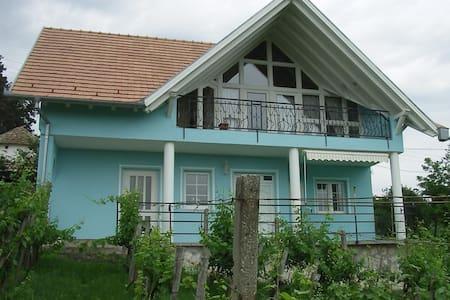 Te huur  vrijstaand huis met internet en airco - Szederkeny - Hus
