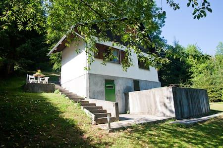 House Gemini on river Kupa-Croatia - Cottage