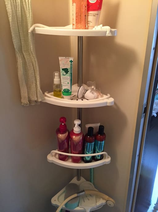 You can use shampoo, conditioner, toner and any of amenity in the bath room.