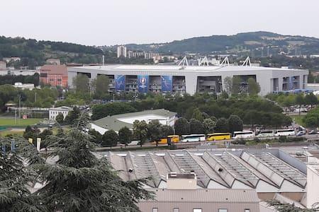 Euro2016 Saint-Etienne:appartement F3Face au stade - Ortak mülk