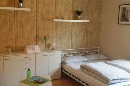 Nice room in the Old Town / Centre - Nuremberg - Apartment