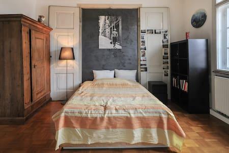 Großes sonniges Zimmer inStadtvilla - Tübingen - House