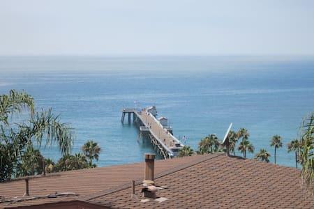 Panoramic Ocean View San Clemente