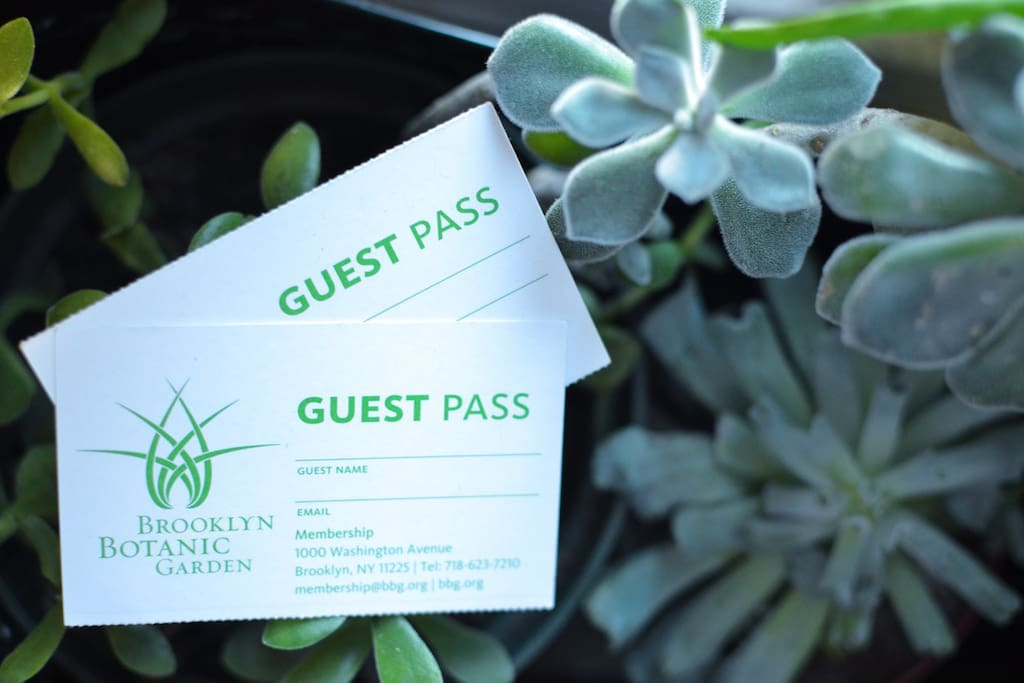 Guest Passes to the beautiful Brooklyn Botanic Garden if you'd like! (I work there :) )