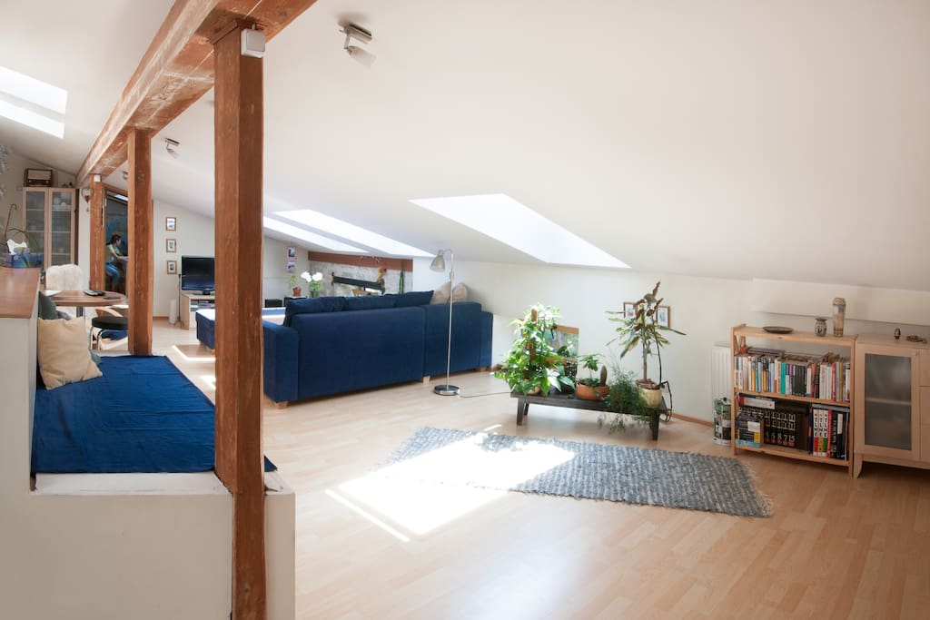 An awesome penthouse in city centre