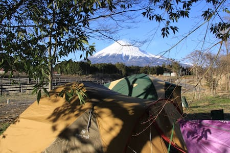 Chill out camp in Mt Fuji resort - Zelt