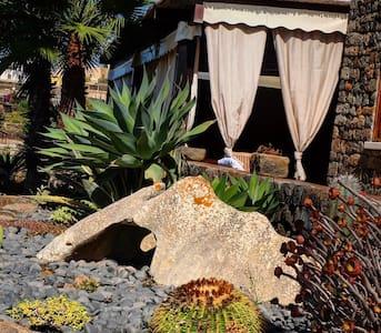 "La Stele di Rekale ""Dammuso Ulivi"" - Pantelleria - House"