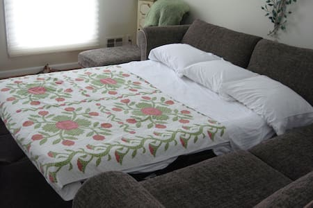Queen Pullout Bed Timonium House - Lutherville-Timonium