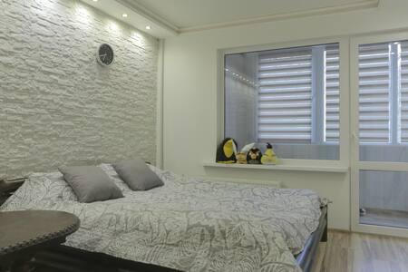 Уютная квартира в Риге - Riga - Leilighet