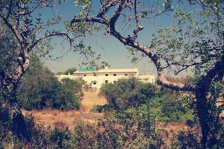 Casa algarvia campestre e luminosa - Algoz