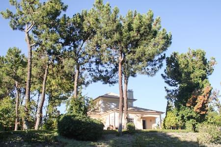 Troia villa with pool / beach - Carvalhal - Villa