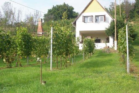 Szőlőskert Vendégház - Baj - Hus