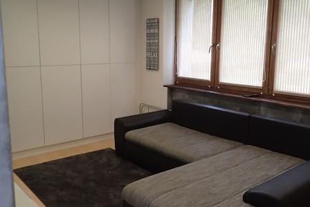 Studio Flat - Łódź