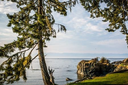 Private beach front cabin - Sooke - Kabin