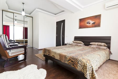 Comfortable  1 room apartment - Apartment