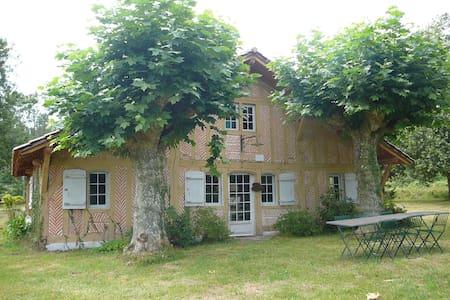 Au milieu de la forêt Landaise - Léon - House