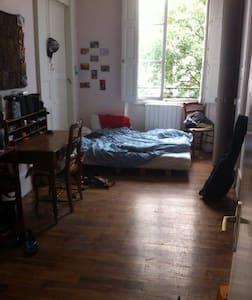 Chambre dans un superbe appart en colocation - 格勒诺布尔