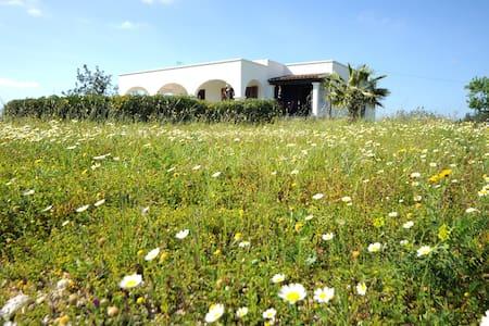 Panoramic Villa 10mn Ibiza - Ibiza - Villa