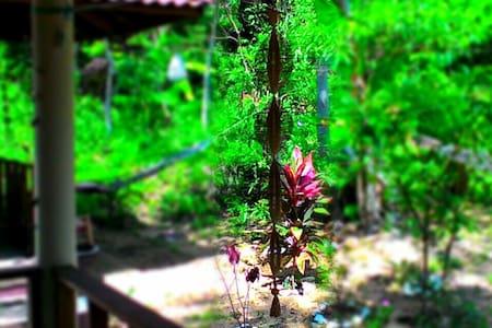 Quiet Jungle View Garden Bungalow - Andere