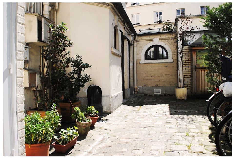 Cour calme et arborée // quiet and planted courtyard