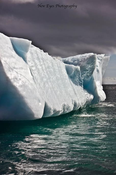 Iceberg at Shoe Cove on October 15 2011