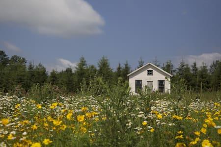 Charming Catskill Mtn Schoolhouse  - Bovina Center - House