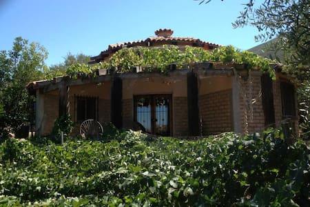 Casa Nativo - Ensenada - Rumah