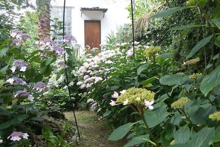"""""""Il Giardino delle Ortensie"""" - Riviera Ligure - Appartement"""