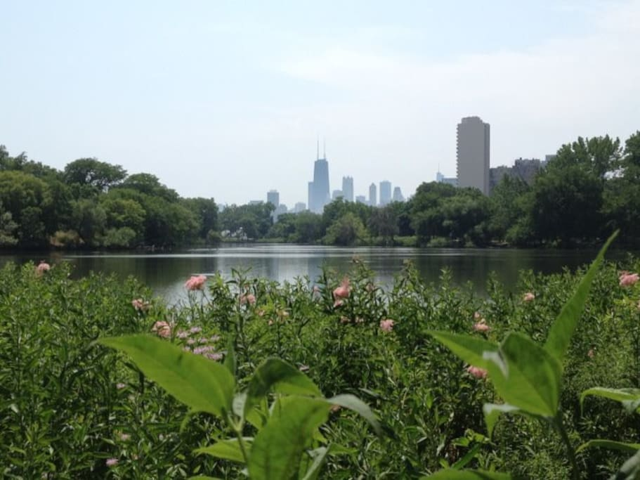 Lincoln Park - Historic North Pond!