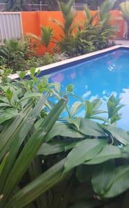 25 Clarke St Tropical living - Suva