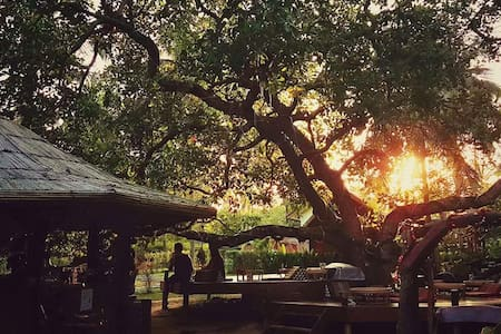 Coffee and Resort @ Koh Payam - Koh Payam - 小屋