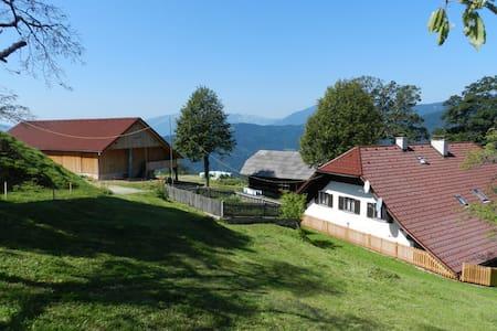 The Visočnik Tourism Farm - Ljubno ob Savinji - Bed & Breakfast