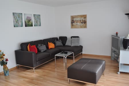 nice apartment 76m2 near Zurich - Apartment