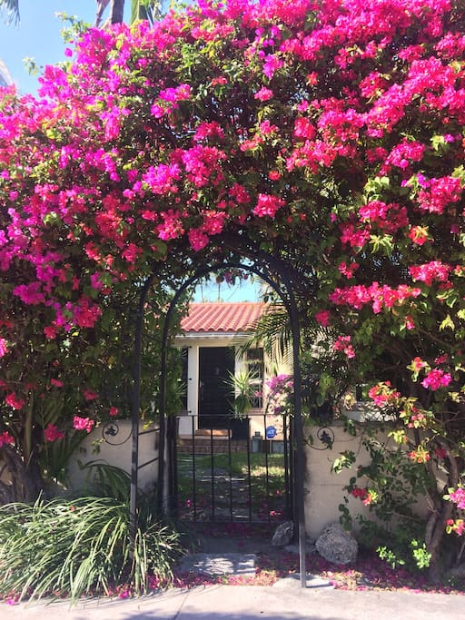Hidden from the street - your own little hideway - only steps away from the SoBe fun!