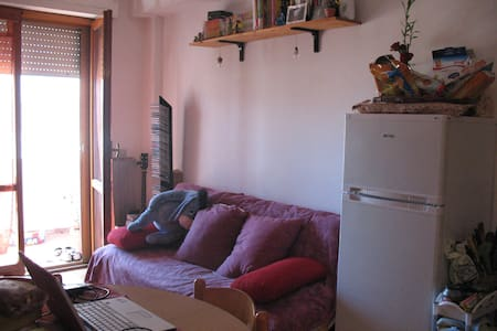 Bed Sofa-Cisanello Pisa only girls