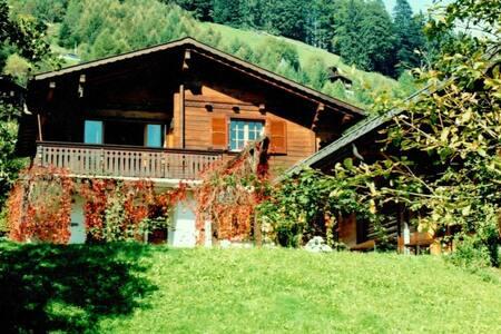 Swiss Alpine Chalet & indoor pool - Chalet