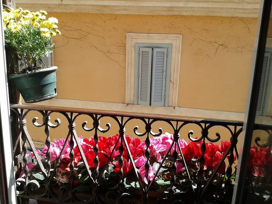 Spring in Rome from home window