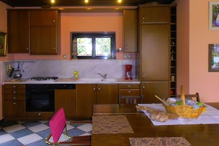 Lovely flat with garden - Thrakomakedones