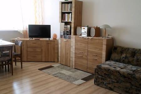 2Zi Ferienwohnung Tamara Swinemünde - Appartement