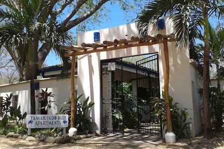 Tamarindo Blue 3 - Appartement