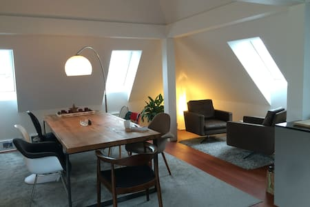 Spacious rooftop appartment - Appartement