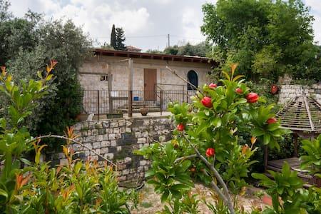 Loft in Ilaniya, Galilee, Israel - Ilaniya - Loftlakás
